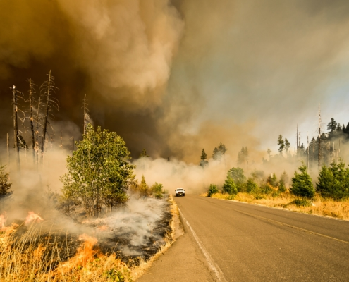 Insurance Coverage for Natural Disasters in Lynnwood, WA